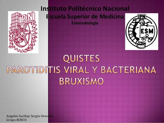 Instituto Politécnico Nacional Escuela Superior de Medicina Estomatología  Angeles Garibay Sergio Oswaldo. Grupo 8CM35