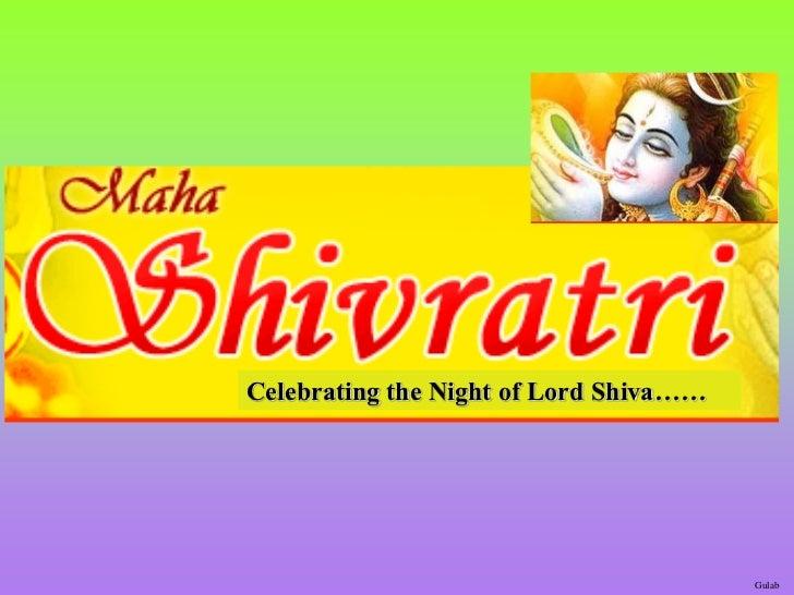 Celebrating the Night of Lord Shiva……                                        Gulab