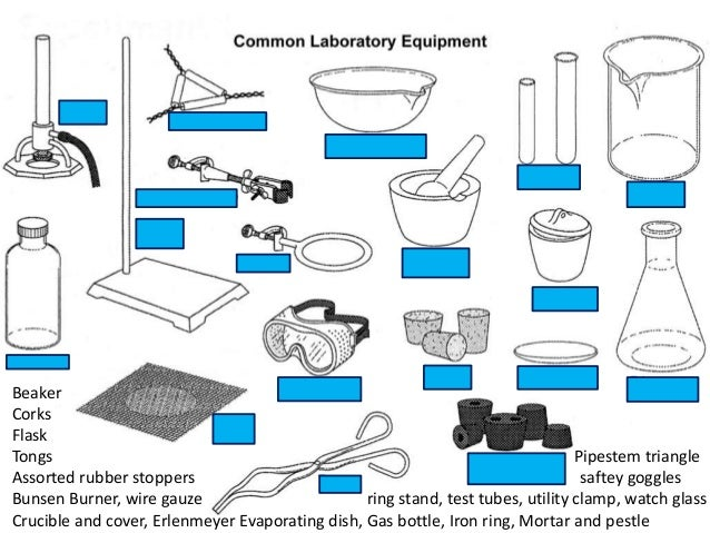 Biology Lab Equipment Worksheet – Laboratory Equipment Worksheet