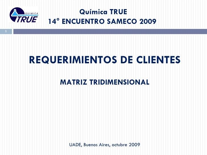 Química TRUE  14° ENCUENTRO SAMECO 2009  REQUERIMIENTOS DE CLIENTES MATRIZ TRIDIMENSIONAL UADE,  Buenos  Aires, octubre 2009