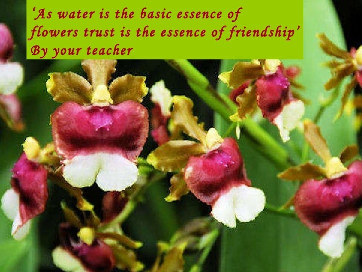' As water is the basic essence of  flowers trust is the essence of friendship' By your teacher