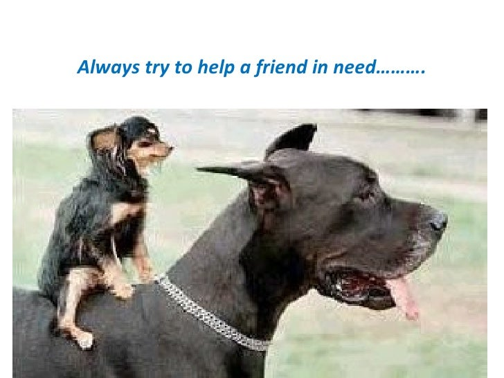 Always try to help a friend in need……….