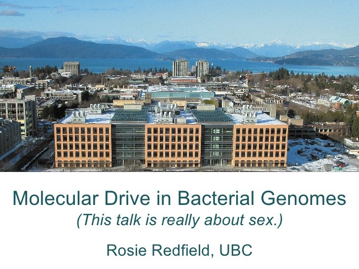 Molecular Drive in Bacterial Genomes (This talk is really about sex.) Rosie Redfield, UBC