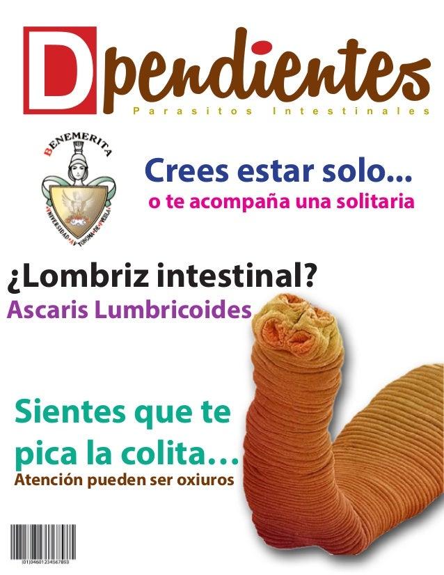 """Lombriz intestinal """"Ascaris Lumbricoides"""""""