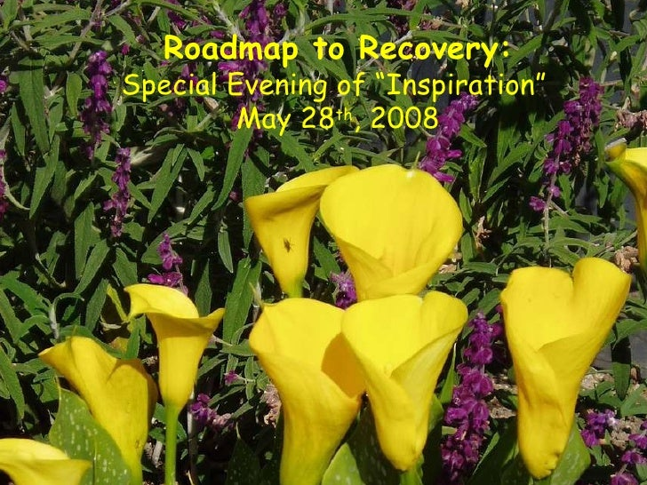 """Roadmap to Recovery: Special Evening of """"Inspiration""""  May 28 th , 2008"""