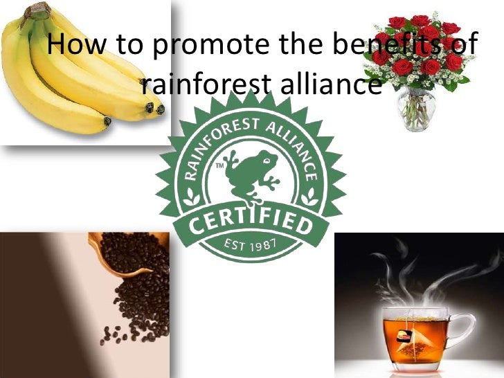 How to promote the benefits of rainforest alliance<br />