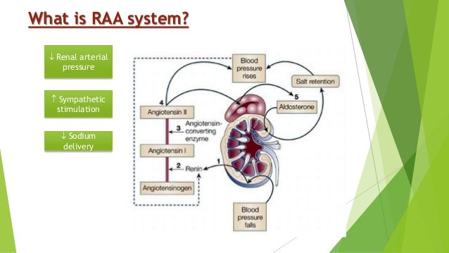 physiological effects of anavar