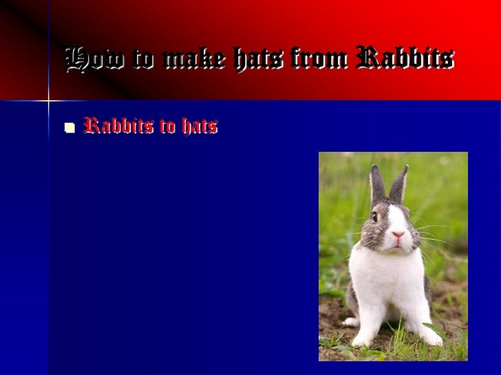 How to make hats from Rabbits      Rabbits to hats 