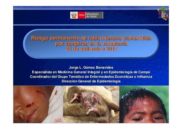 Ministerio de Salud 23 September 2010Slide 1 Riesgo permanente de rabia humana transmitidaRiesgo permanente de rabia human...