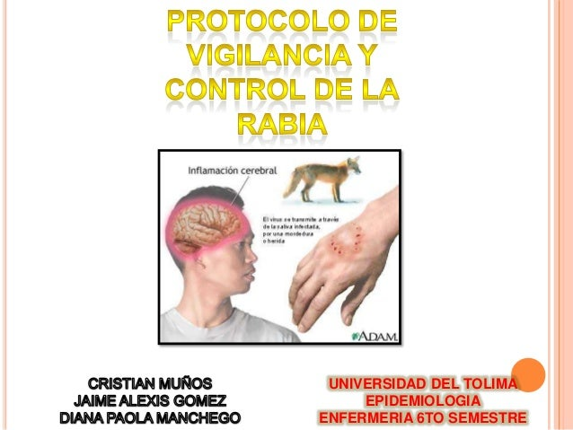 UNIVERSIDAD DEL TOLIMA EPIDEMIOLOGIA ENFERMERIA 6TO SEMESTRE