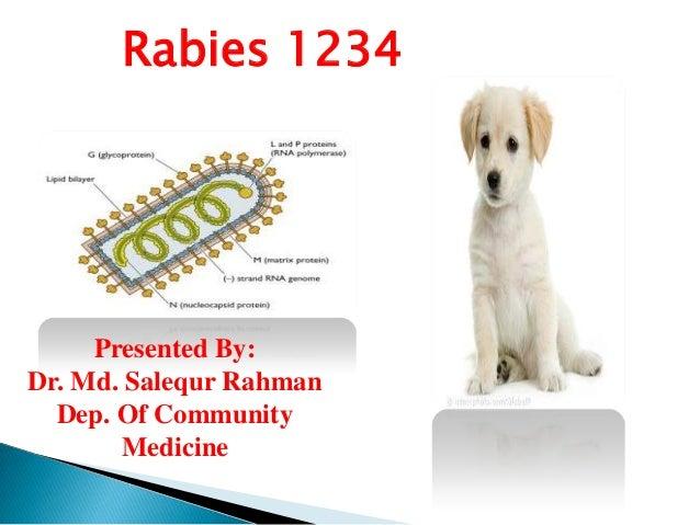 Rabies 1234  Presented By: Dr. Md. Salequr Rahman Dep. Of Community Medicine