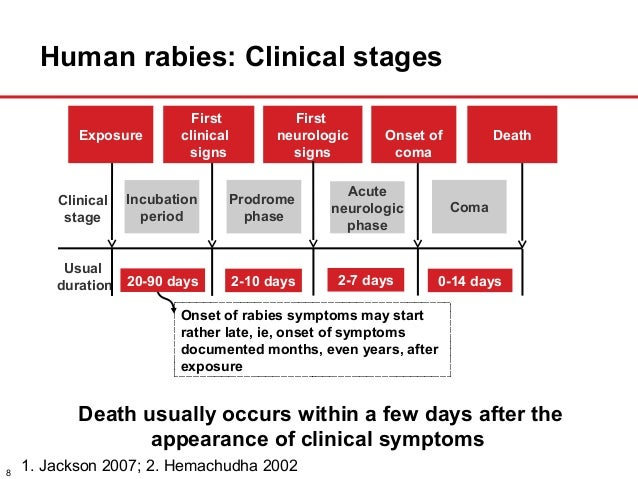 the causes prevention and symptoms of rabies Information on rabies with there causes, symptoms, diagnosis and treatment.