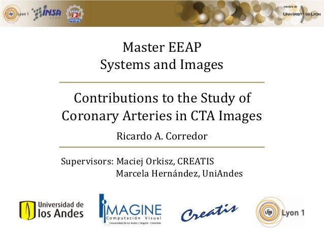 Master EEAP Systems and Images Contributions to the Study of Coronary Arteries in CTA Images Supervisors: Maciej Orkisz, C...