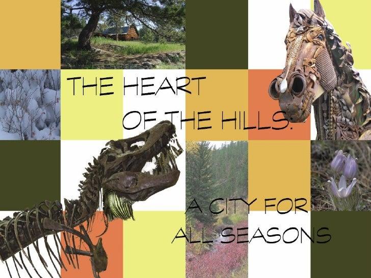 DesignSD - Hill City Boards