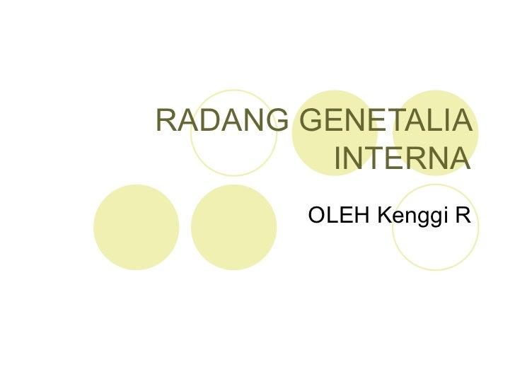 Radang genetalia interna