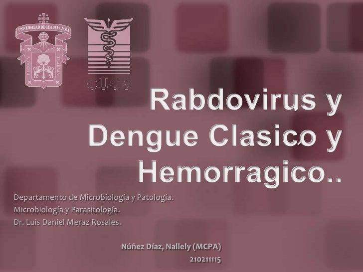 Rabdovirus y Dengue Clasico y Hemorragico..<br />Departamento de Microbiología y Patología.<br />Microbiología y Parasitol...