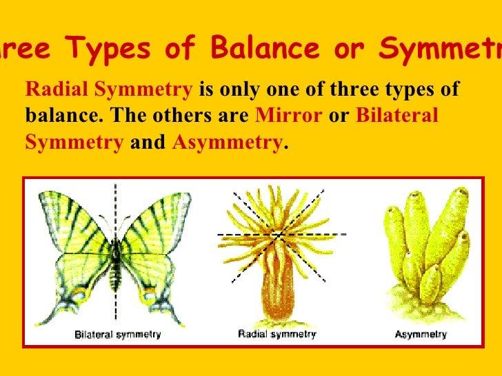 Three Types of Balance or