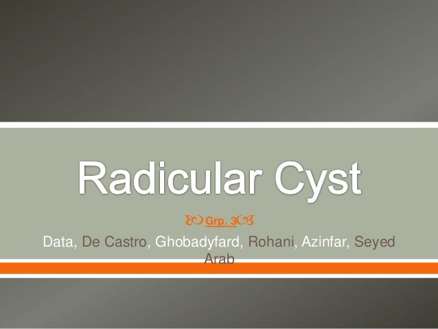   Data, De Castro, Ghobadyfard, Rohani, Azinfar, Seyed Arab Grp. 3