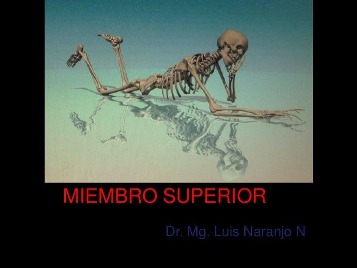MIEMBRO SUPERIOR        Dr. Mg. Luis Naranjo N