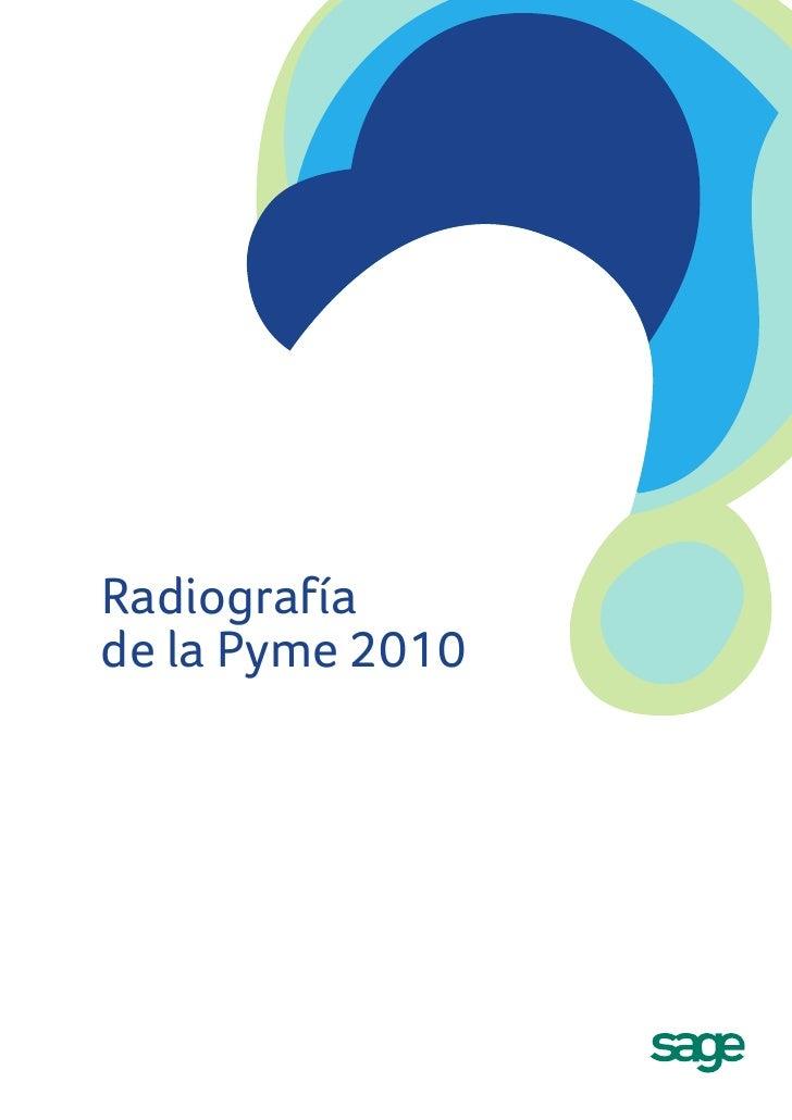 Radiografía de la Pyme 2010
