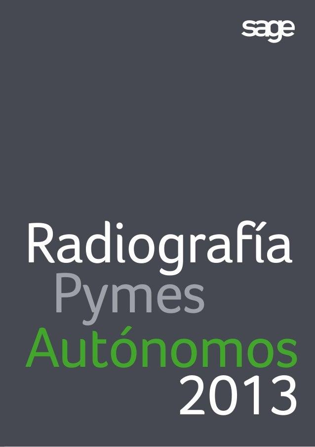 RadiografíaPymesAutónomos2013
