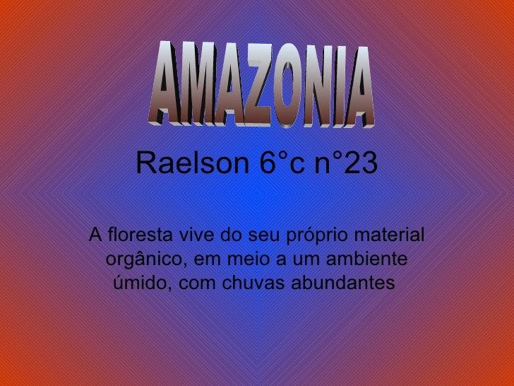 Raelson 6°c n°23 A floresta vive do seu próprio material orgânico, em meio a um ambiente úmido, com chuvas abundantes  AMA...