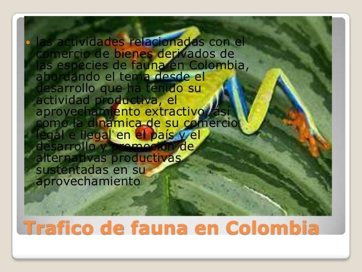    las actividades relacionadas con el    comercio de bienes derivados de    las especies de fauna en Colombia,    aborda...