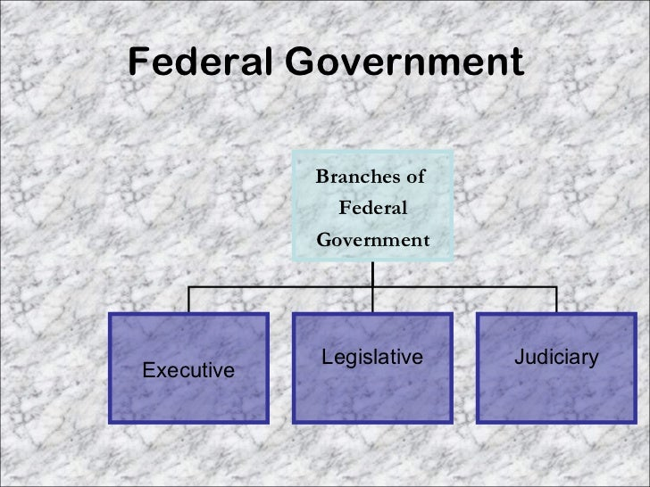 describing the american federal system of government The supreme court of the united states is the highest court in the american judicial system, and has the power to decide appeals on all cases brought in federal court or those brought in state court but dealing with federal law.