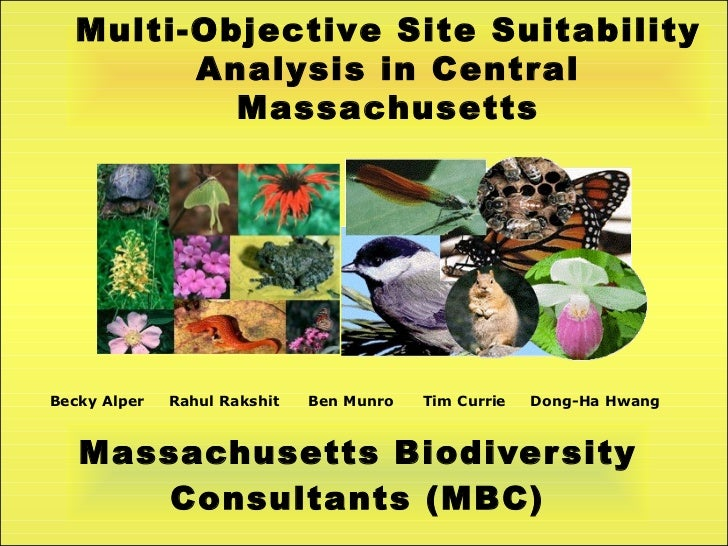 Site Suitability Analysis