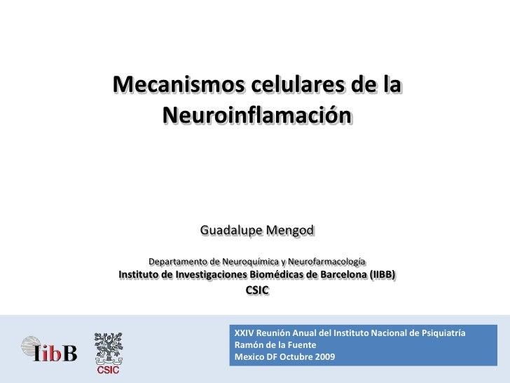 RAI XXIV.07.Neuroinflamacion
