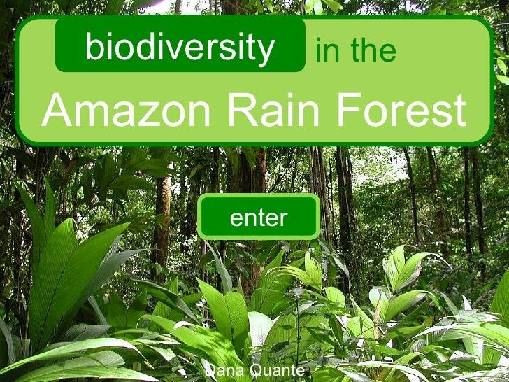 Amazon Rain Forest biodiversity in the Dana Quante enter