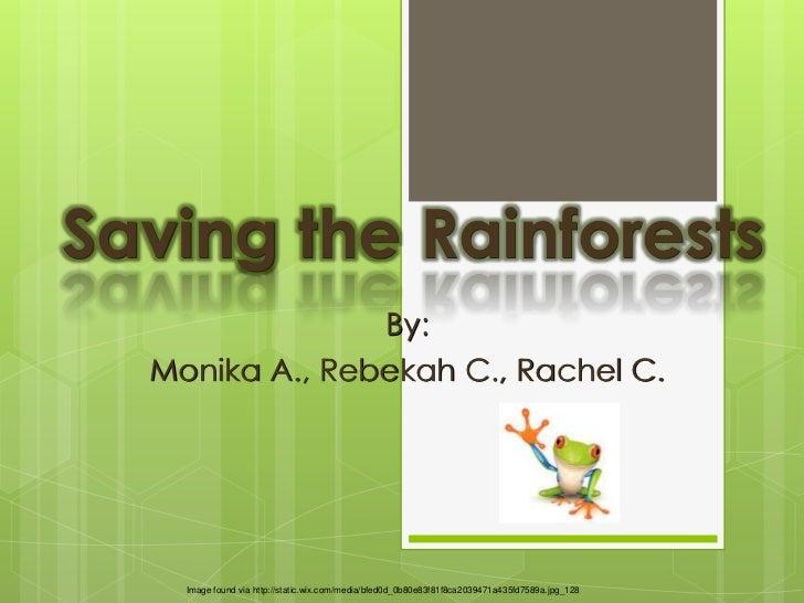 Saving the Rainforests                By:  Monika A., Rebekah C., Rachel C.    Image found via http://static.wix.com/media...