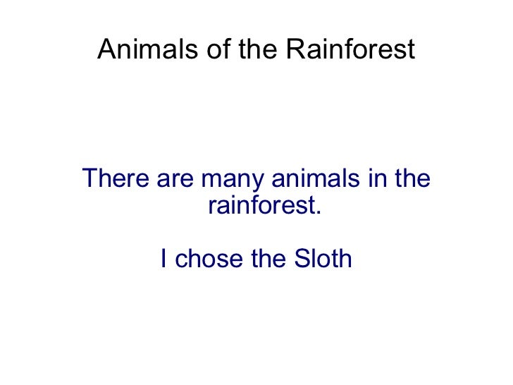 Animals of the Rainforest There are many animals in the rainforest. I chose the Sloth