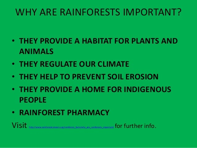 tropical forests their importance and destruction The importance of tropical rainforest in that it decreases their relative toward slowing the destruction of the rainforest.