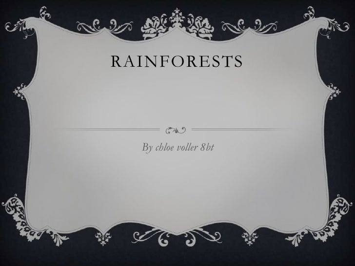 Rainforests by Chloe