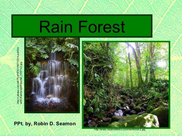 PPt. by, Robin D. Seamon http://www.casarioblanco.com/rainforest-2.jpg Rain Forest http://i.pbase.com/o6/75/47975/1/587103...