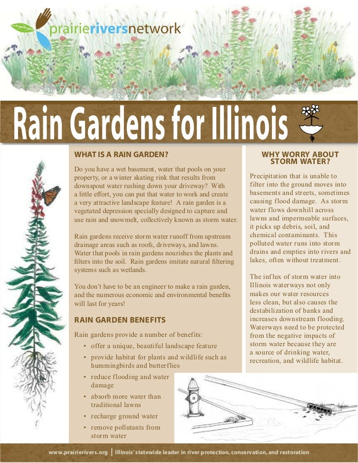 WHAT IS A RAIN GARDEN?                                                       WHY WORRY ABOUT                              ...