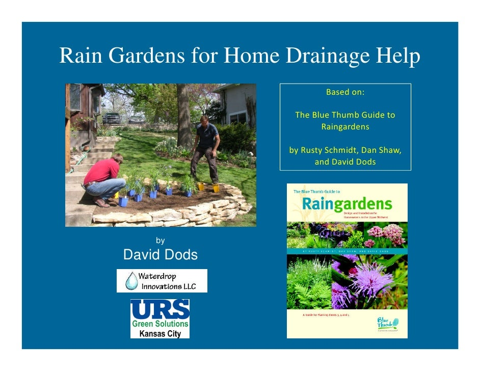Rain Gardens for Home Drainage Help                              Based on:                       The Blue Thumb Guide to  ...