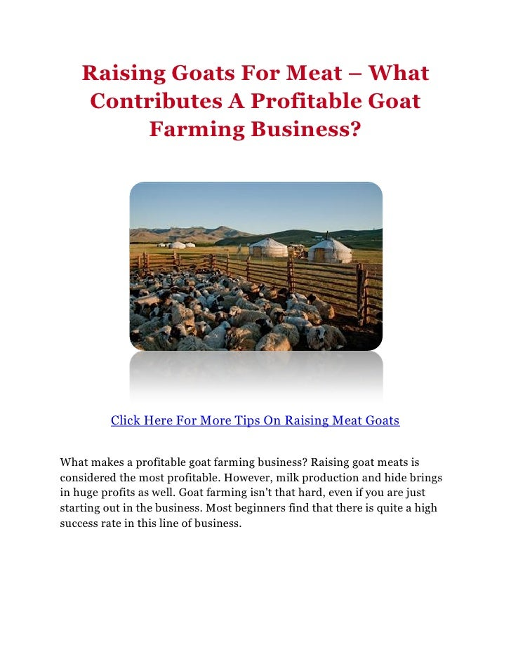business plan for rearing goats