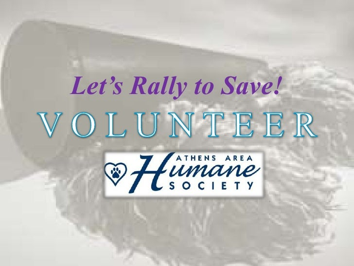 Let's Rally to Save!<br />V O L U N T E E R<br />