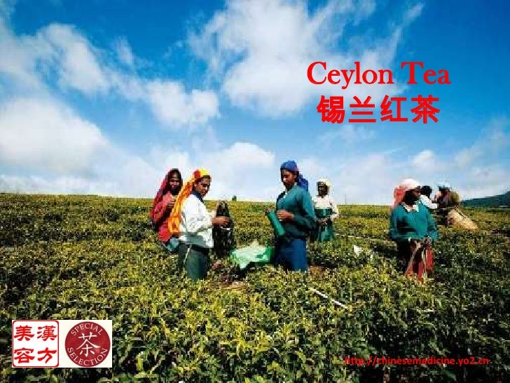 Ceylon Tea<br />锡兰红茶<br />http://chinesemedicine.yo2.cn<br />