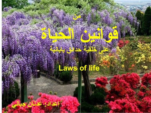 من الحياة قوانين يابانية حدائق خلفية على Laws of life جبالي عدنان :إعداد