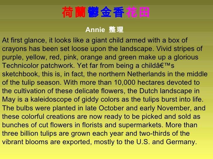 荷蘭 鬱金香 花田 Annie  整理   At first glance, it looks like a giant child armed with a box of crayons has been set loose upon the...