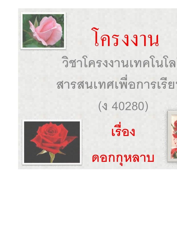 โครงงานดอกกุหลาบ