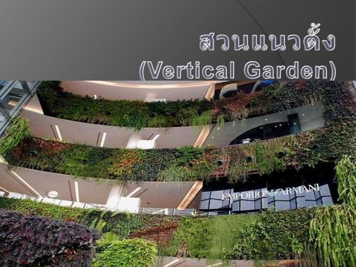 สวนแนวตั้ง(Vertical Garden) <br />ส<br />