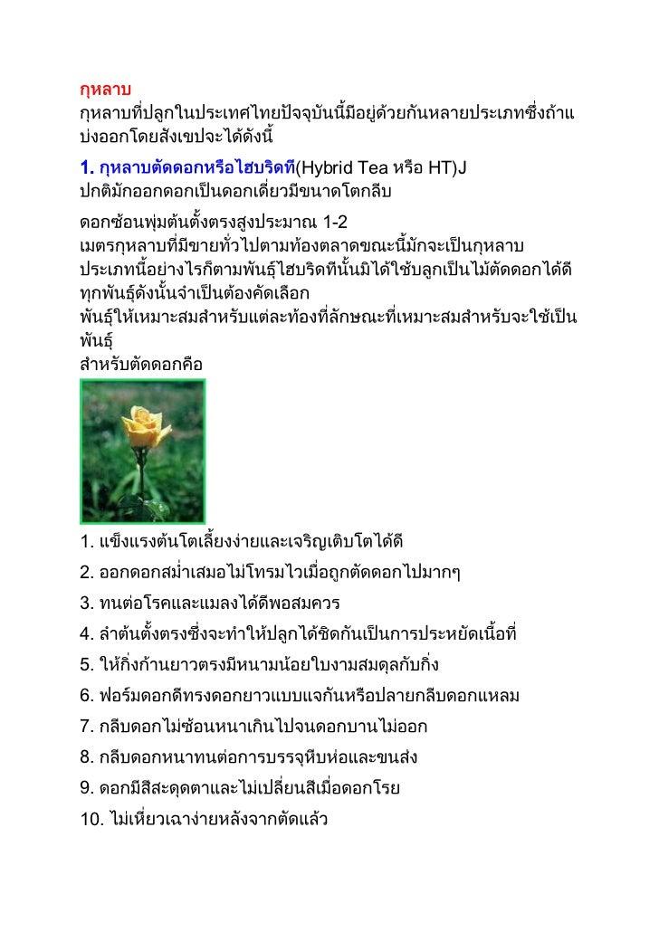 1.    (Hybrid Tea   HT)J         1-21.2.3.4.5.6.7.8.9.10.