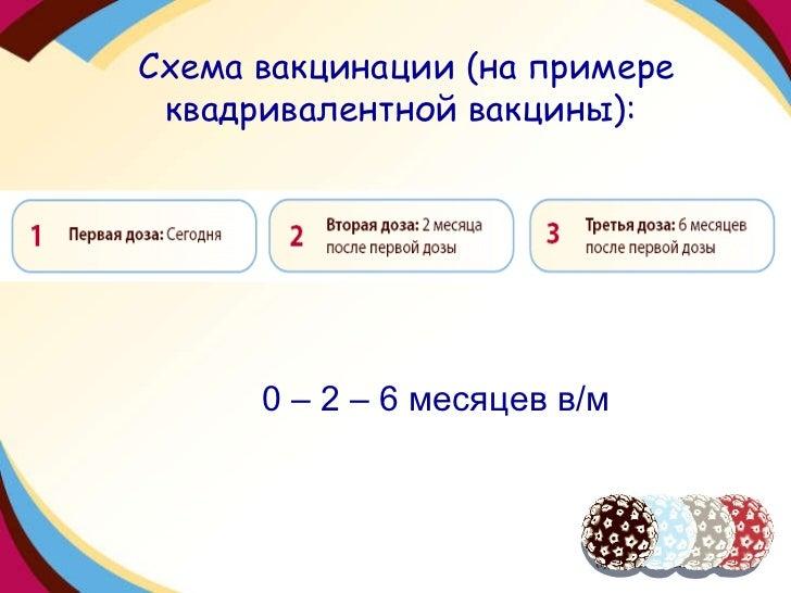 Схема вакцинации (на примере