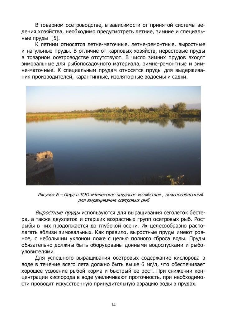 Известкование пруда - Сельская жизнь