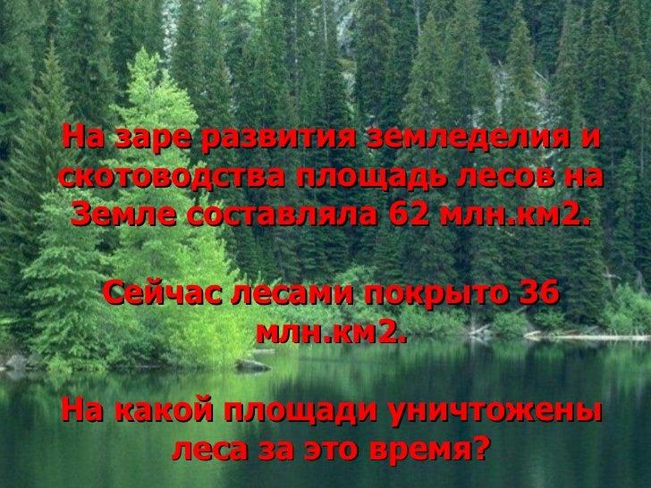 На заре развития земледелия искотоводства площадь лесов на Земле составляла 62 млн.км2.  Сейчас лесами покрыто 36         ...