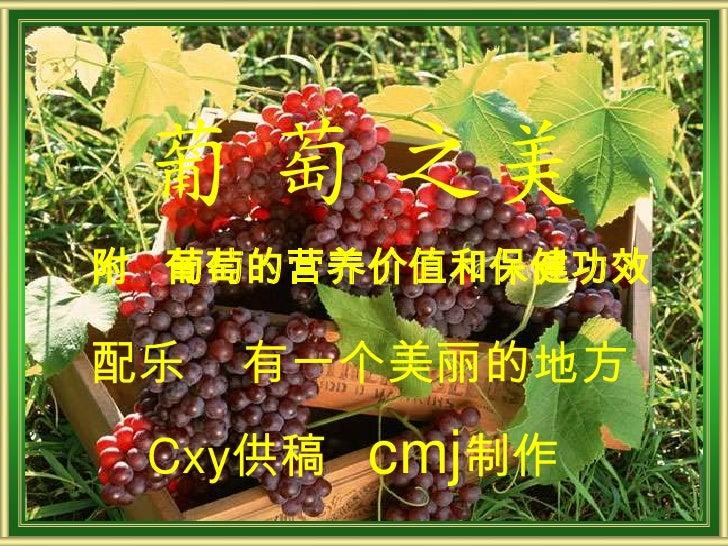 葡 萄 之美附 葡萄的营养价值和保健功效配乐   有一个美丽的地方 Cxy供稿   cmj制作